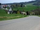 Ostthüringentour :: Blick zurück auf den Anstieg